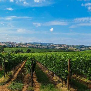 La Toscana dei Sapori