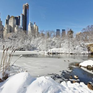 Magia natalizia a New York